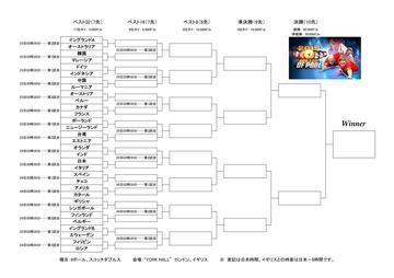 Worldcupofpool-bracket15_01.jpg